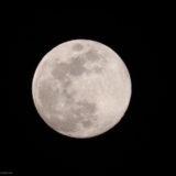 【カメラ初心者】一眼レフカメラで月をきれいに撮影するには?(ISO感度別比較)
