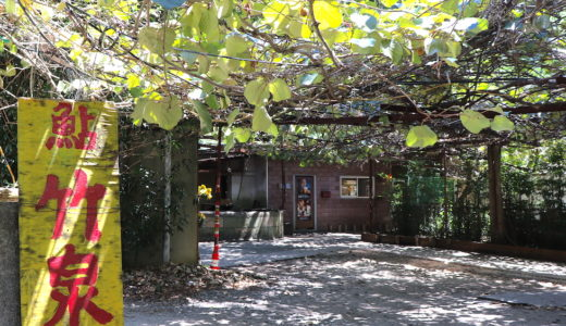 知る人ぞ知る山口県の鮎専門店 竹泉で高コスパの鮎定食