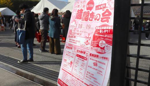 【レポ】浜福鶴の蔵開きに行ってきました