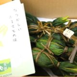 【冷凍庫に常備したい】新潟名物「笹団子」は冷凍保存しても風味が落ちないし栄養もあるからおやつに最適だぞ