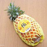 【冷凍保存】パイナップルは刻んで冷凍が使いやすい!一人暮らし・二人暮らしでも丸ごと買って大丈夫だよ